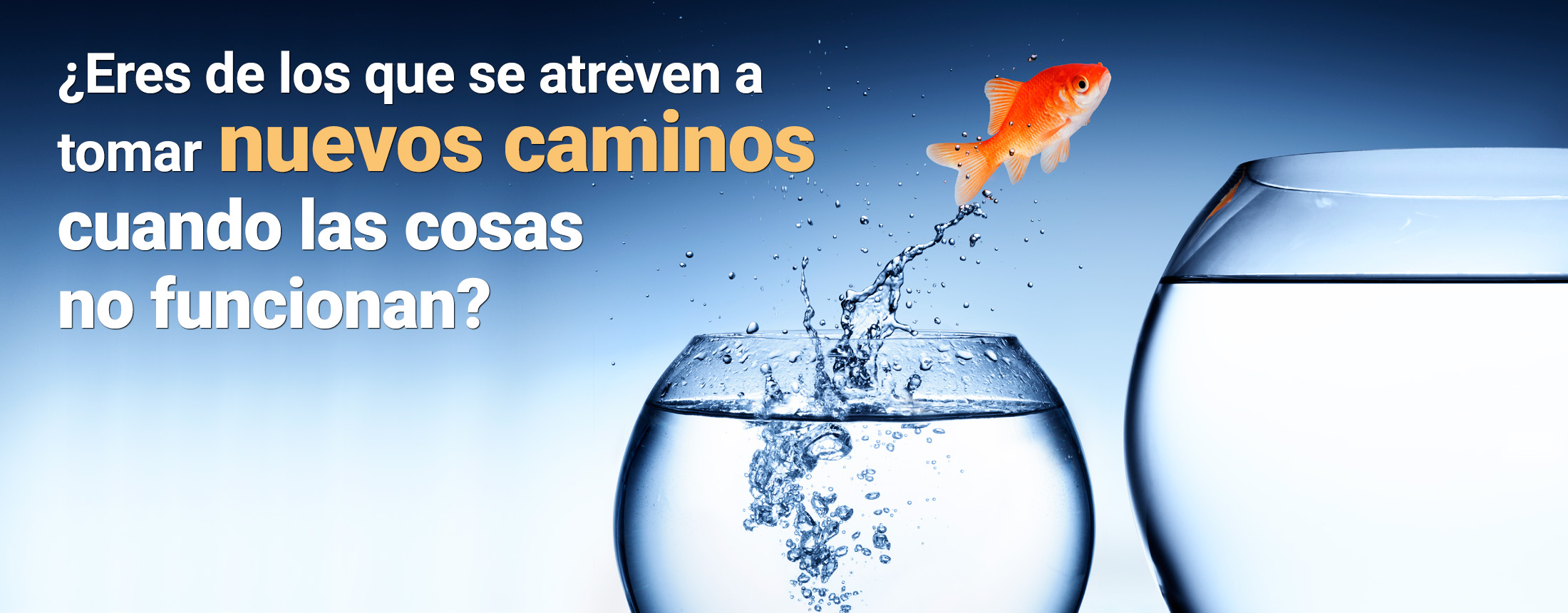 Sinapsis Marketing & Sales Consulting - Juntos Logramos tu Crecimiento Rentable